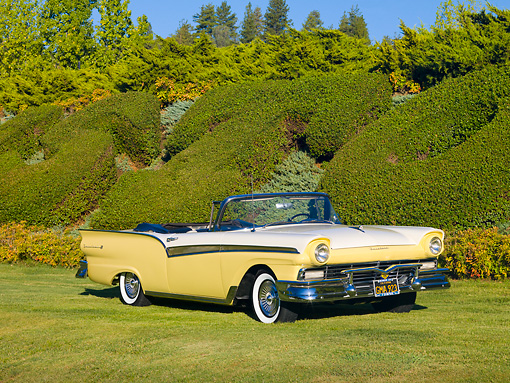 AUT 21 RK2308 01 © Kimball Stock 1957 Ford Fairlane 500 Convertible Yellow And White 3/4 Front View On Grass By Hedge
