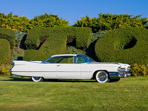 AUT 21 RK2311 01 © Kimball Stock 1959 Cadillac Coupe White Profile View On Grass By Hedge
