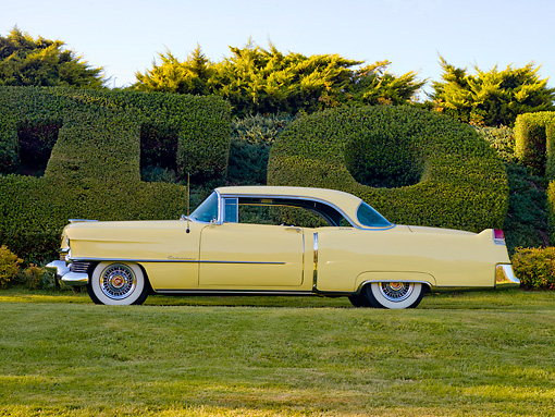 AUT 21 RK2312 01 © Kimball Stock 1954 Cadillac Coupe De Ville Yellow Profile View On Grass By Hedge