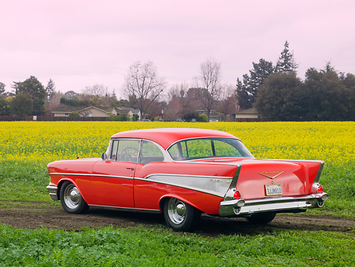 AUT 21 RK2344 01 © Kimball Stock 1957 Chevrolet Bel Air Red 3/4 Rear View In Field Of Yellow Wildflowers
