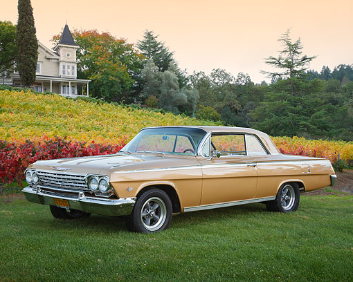 AUT 22 BK0132 01 © Kimball Stock 1962 Chevrolet Impala SS 50th Anniversary Gold 3/4 Side View On Grass By House And Autumn Vineyard
