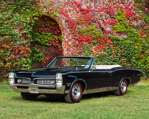 AUT 22 RK0218 06 © Kimball Stock 1967 Pontiac GTO Convertible Black 3/4 Front View On Grass By Ivy Covered Building