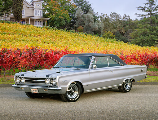 AUT 22 RK1127 02 © Kimball Stock 1967 Plymouth Belvedere GTX Hemi Silver 3/4 Side View On Pavement