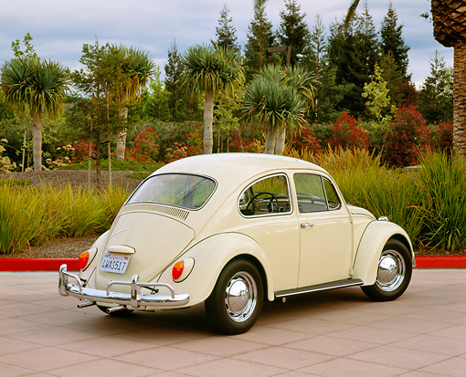 AUT 22 RK1439 01 © Kimball Stock 1967 VW Bug Ivory 3/4 Rear View On Pavement