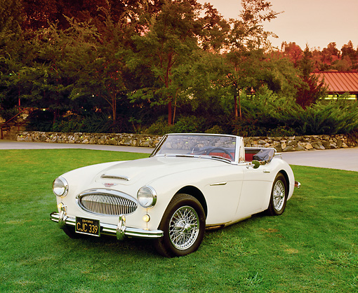 AUT 22 RK1814 04 © Kimball Stock 1964 Austin-Healey Convertible Cream 3/4 Front View On Grass Filtered