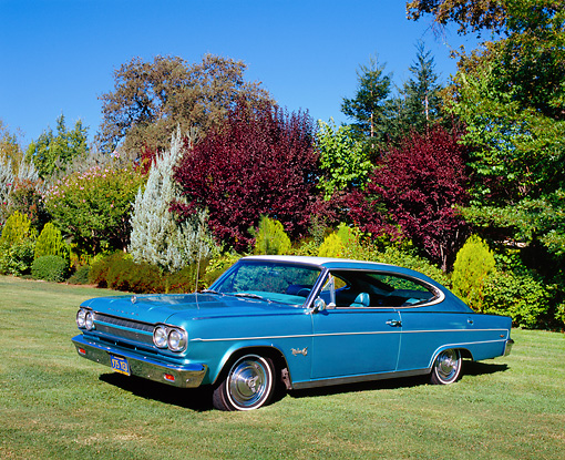 AUT 22 RK2253 02 © Kimball Stock 1965 Rambler Marlin Teal And White 3/4 Side View On Grass By Trees