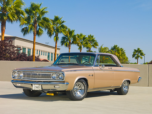 AUT 22 RK2951 01 © Kimball Stock 1965 Dodge Coronet 500 Gold 3/4 Front View On Pavement By Palm Trees