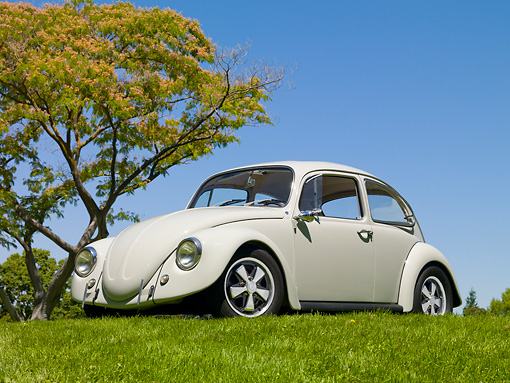 AUT 22 RK3103 01 © Kimball Stock 1967 Volkswagen Beetle Fontana Gray 3/4 Front View On Grass By Tree