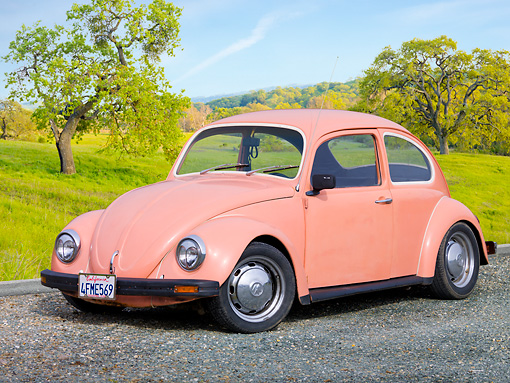 AUT 22 RK3191 01 © Kimball Stock 1968 Volkswagen Bug Pink 3/4 Front View On Gravel By Field