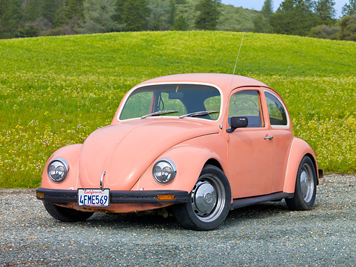 AUT 22 RK3193 01 © Kimball Stock 1968 Volkswagen Bug Pink 3/4 Front View On Gravel By Field