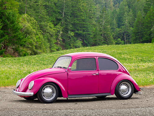 AUT 22 RK3195 01 © Kimball Stock 1967 Volkswagen Bug Bright Pink 3/4 Side View On Dirt By Field And Pine Trees