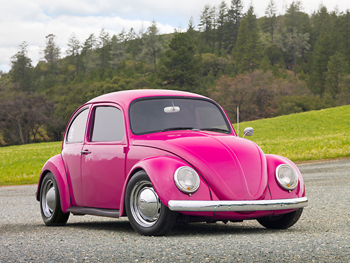 AUT 22 RK3198 01 © Kimball Stock 1967 Volkswagen Bug Bright Pink 3/4 Front View On Gravel By Grass And Pine Trees