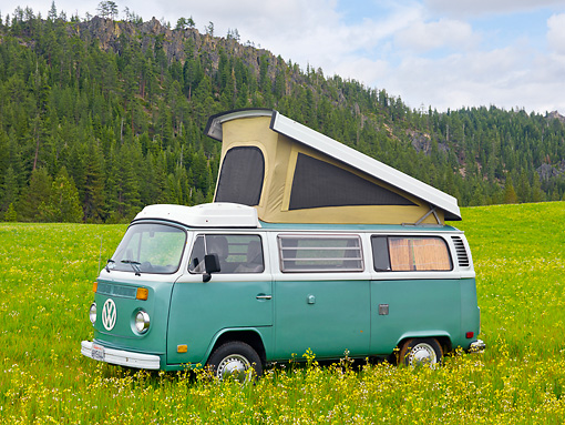 AUT 22 RK3206 01 © Kimball Stock 1969 Volkswagen Westfalia Camper Green And White 3/4 Side View On Grass