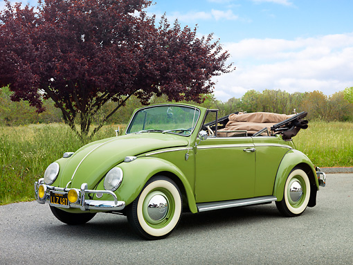 AUT 22 RK3233 01 © Kimball Stock 1965 Volkswagen Bug Convertible Green 3/4 Front View On Pavement By Grass And Trees
