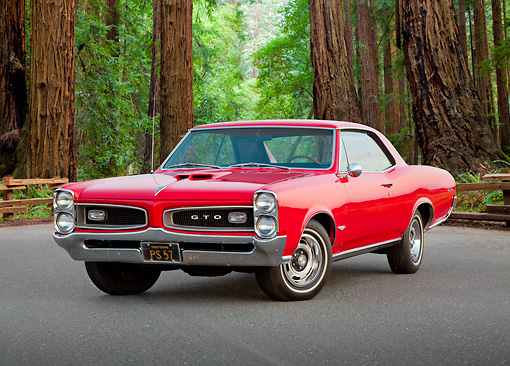 AUT 22 RK3264 01 © Kimball Stock 1966 Pontiac GTO Red 3/4 Front View On Road By Redwood Trees