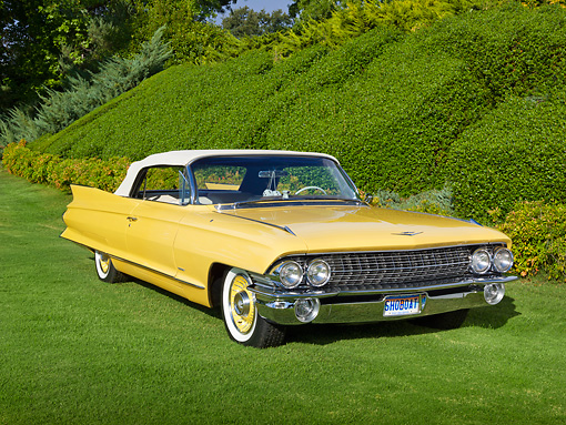 AUT 22 RK3331 01 © Kimball Stock 1961 Cadillac Series 62 Maize Yellow 3/4 Front View On Grass By Shrubs