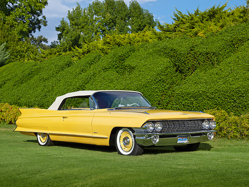 AUT 22 RK3332 01 © Kimball Stock 1961 Cadillac Series 62 Maize Yellow 3/4 Front View On Grass By Shrubs