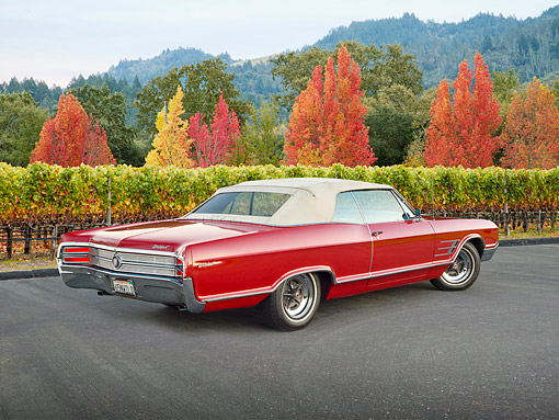 AUT 22 RK3349 01 © Kimball Stock 1965 Buick Wildcat Convertible Red 3/4 Rear View On Pavement By Vineyard And Autumn Trees