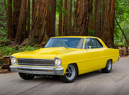 AUT 22 RK3474 01 © Kimball Stock 1966 Chevrolet Nova Yellow 3/4 Front View On Pavement By Redwood Trees