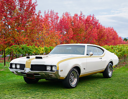 AUT 22 RK3531 01 © Kimball Stock 1969 Oldsmobile Hurst/Olds White And Gold 3/4 Front View On Grass By Autumn Vineyard