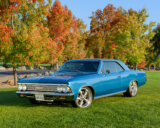 AUT 22 RK3536 01 © Kimball Stock 1966 Chevelle Malibu Blue 3/4 Front View On Grass By Autumn Trees