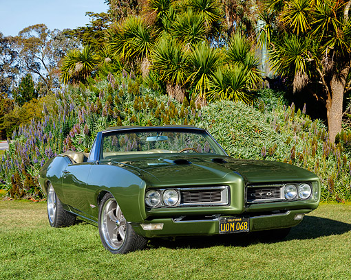 AUT 22 RK3669 01 © Kimball Stock 1968 Pontiac GTO Green Convertible 3/4 Front View By Trees