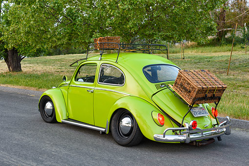 AUT 22 RK3740 01 © Kimball Stock 1963 Volkswagen Bug Green 3/4 Rear By House