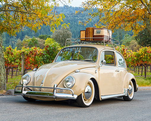 AUT 22 RK3746 01 © Kimball Stock 1966 Volkswagen Beetle With Rack Two-Tone Beige 3/4 Front View By Vineyard