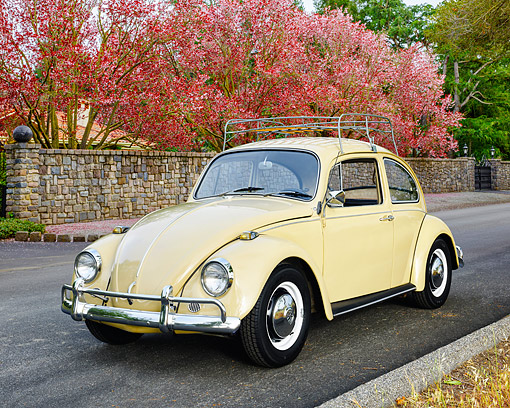 AUT 22 RK3753 01 © Kimball Stock 1967 Volkswagen Beetle Yellow 3/4 Front View On Road