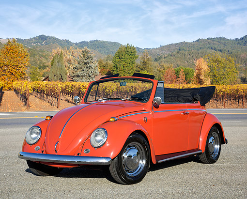 AUT 22 RK3766 01 © Kimball Stock 1966 Volkswagen Beetle Convertible Orange 3/4 Front View By Vineyard