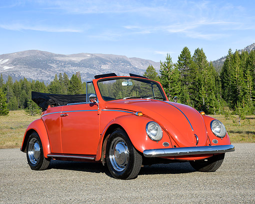 AUT 22 RK3767 01 © Kimball Stock 1966 Volkswagen Beetle Convertible Orange 3/4 Front View By Forest And Mountain