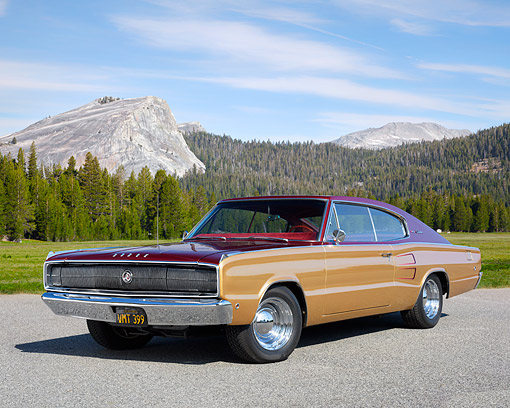 AUT 22 RK3792 01 © Kimball Stock 1967 Dodge Charger Gold And Wine Red 3/4 Front In Forest Meadow