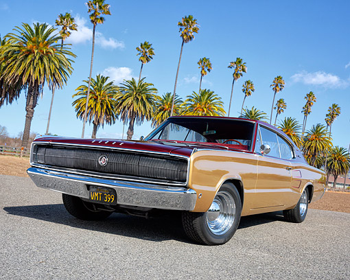 AUT 22 RK3793 01 © Kimball Stock 1967 Dodge Charger Gold And Wine Red Low 3/4 Front In On Pavement By Palm Trees