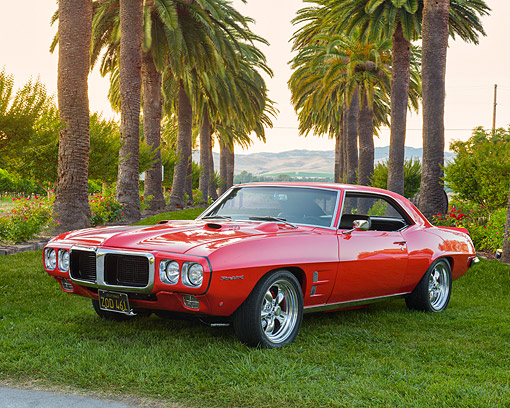 AUT 22 RK3795 01 © Kimball Stock 1969 Pontiac Firebird 400 Red 3/4 Front View On Grass By Palm Trees