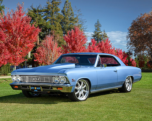 AUT 22 RK3806 01 © Kimball Stock 1966 Chevrolet Chevelle SS 427 Ice Blue 3/4 Front View On Grass By Trees