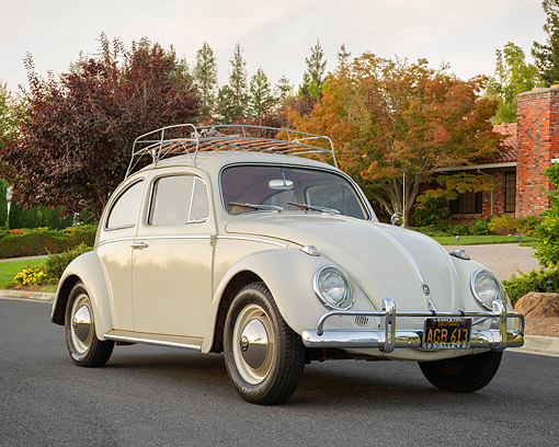 AUT 22 RK3868 01 © Kimball Stock 1961 Volkswagen Beetle Beige 3/4 Front View On Pavement By Autumn Trees