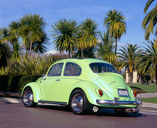 AUT 22 RK1395 03 © Kimball Stock 1967 VW Ragtop Green 3/4 Rear View By Palm Trees