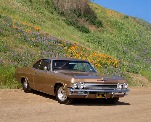 AUT 22 RK1471 01 © Kimball Stock 1965 Chevrolet Impala SS Prostreet Gold 3/4 Front View On Dirt By Flower Hill