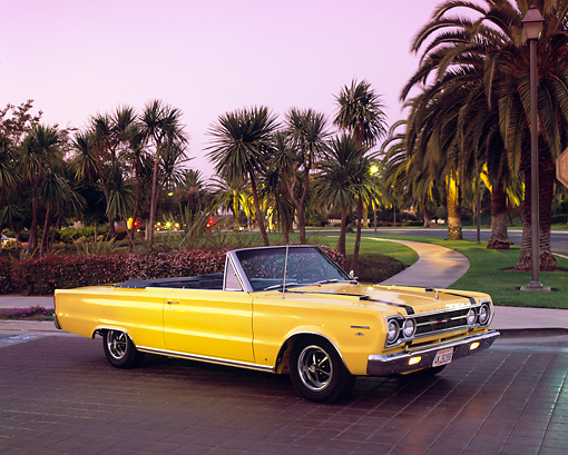AUT 22 RK1554 01 © Kimball Stock 1967 Plymouth GTX Convertible Yellow 3/4 Side View On Driveway By Palm Trees