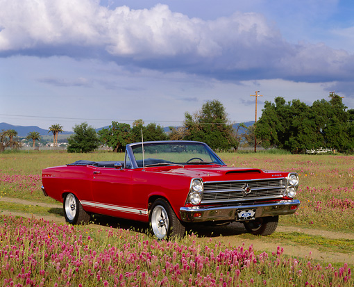 AUT 22 RK1698 04 © Kimball Stock 1966 Ford Fairlane GTA Convertible Red 3/4 Front View In Flower Field