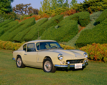 AUT 22 RK1824 02 © Kimball Stock 1967 Triumph GT6 Coupe Yellow 3/4 Front View On Grass By Shrubs