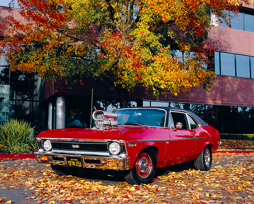 AUT 22 RK2129 02 © Kimball Stock 1969 Chevy Nova SS Red 3/4 Front View On Pavement By Building And Fall Trees