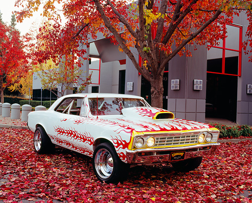 AUT 22 RK2137 02 © Kimball Stock 1967 Chevy Chevelle White With Flames 3/4 Front View By Fall Trees And Building
