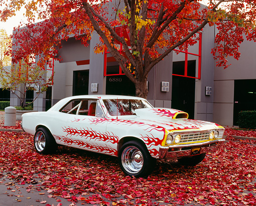 AUT 22 RK2138 02 © Kimball Stock 1967 Chevy Chevelle White With Flames 3/4 Side View By Fall Trees And Building