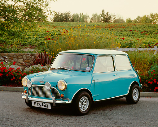AUT 22 RK2240 02 © Kimball Stock 1962 Austin, Mini Cooper, Light Blue And White 3/4 Front View On Pavement By Flowers