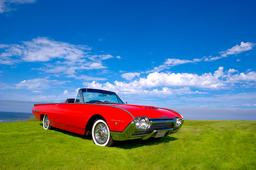 AUT 22 RK2343 01 © Kimball Stock 1962 Ford Thunderbird Sports Roadster Red Low 3/4 Front View On Grass