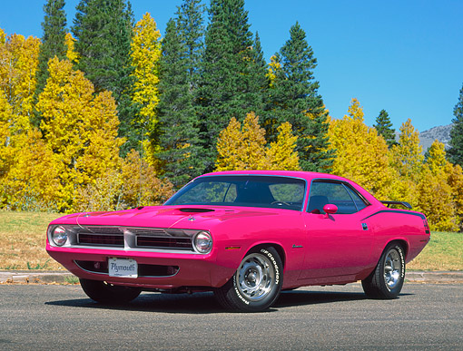 AUT 23 RK0023 01 © Kimball Stock 1970 Plymouth Cuda 440 Six Pac Pink 3/4 Front View On Pavement By Trees And Grass