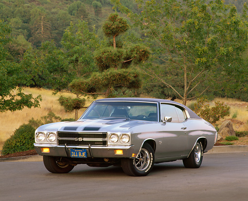 AUT 23 RK0033 01 © Kimball Stock 1970 396 Chevy Chevelle Silver Black Stripe 3/4 Front View On Pavement By Trees