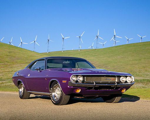 AUT 23 RK0159 01 © Kimball Stock 1970 Dodge Challenger Plum Crazy Low 3/4 Front View On Pavement