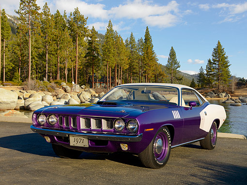 AUT 23 RK1080 01 © Kimball Stock 1971 Plymouth Hemi Barracuda Plum Crazy And White 3/4 Front View On Pavement By Trees